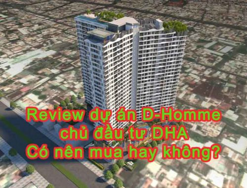 Review dự án D Homme Quận 6 chủ đầu tư DHA có nên mua