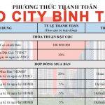 Phương thức thanh toán Aio City Bình Tân từng đợt
